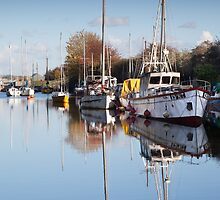 Lydney Harbour  by David Tinsley