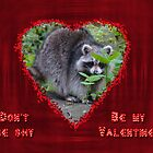 Valentine's Day Greeting Card - Raccoon by MotherNature