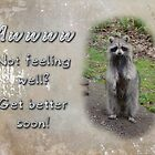 Get Well Greeting Card - Raccoon - Feel Better Soon by MotherNature