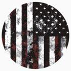 American Flag by jedidiah2121
