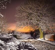 Night snow scene  by simon17