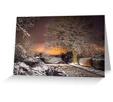 Night snow scene  Greeting Card