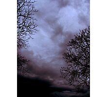 Black&Violet Photographic Print