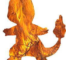 Charmander's Flame by Gage White