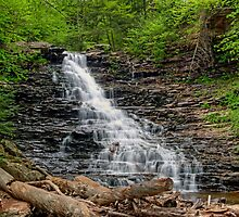 F. L. Ricketts Cascading Falls by Gene Walls