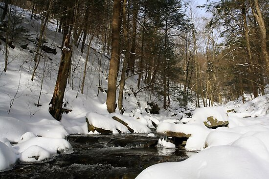 Virgin Snow Along Kitchen Creek by Gene Walls