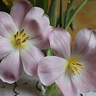 Floral Arrangement by karina5