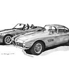 BMW 507 and Z8  by Steve Pearcy