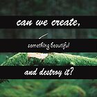 Can we create something beautiful.. by spaceprincess