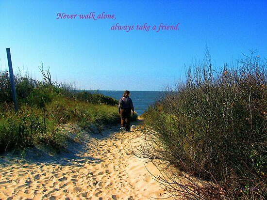 Never Walk Alone, Always Walk With A Friend by Annie Zeno