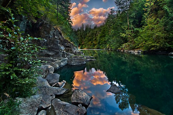 Cowichan River Paradise by Thomas Dawson