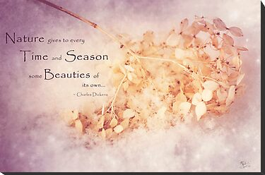 Season's Beauty by KBritt