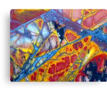 Dragonfly Wing (Cherry Creek Jasper) Canvas Print