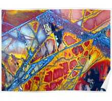 Dragonfly Wing (Cherry Creek Jasper) Poster