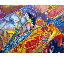 Dragonfly Wing (Cherry Creek Jasper) Photographic Print