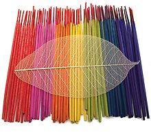 Coloured Incense and Leaf by Dan Odling