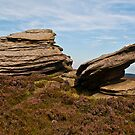 Rocks on Derwent Edge by Pamsar