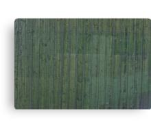 Green plank wall Canvas Print