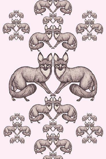 Bat Eared Fox by samclaire