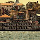 Sydney Showboat by Stan Owen