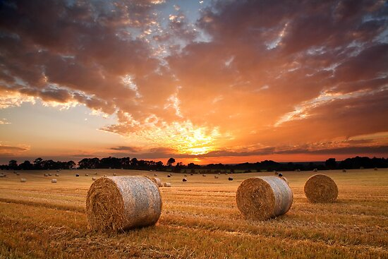 Harvest Sunset by Richard McAleese