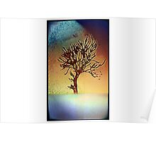 Abstract tree poster Poster