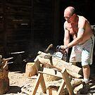 Testing The New Chainsaw by aussiebushstick