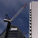 thee cranes ov Brisbane 2013 DAILY TOUR - Day 19 by Craig Dalton