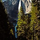 Yosemite Falls by Phillip M. Burrow