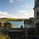 St Mawes Castle, Cornwall by Mark Baldwyn