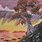 Cypress Sun by Warren  Thompson