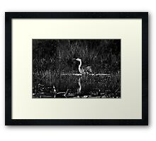 Black and White Fishing Expedition Framed Print