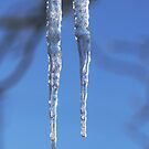 Icicles by Robert Armendariz