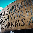 Wales Millennium Centre - Cardiff by Lee Jones