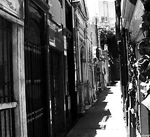 la recoleta cemetery 007 by Karl David Hill