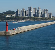 Harbor, Busan, South Korea by Lucinda Walter