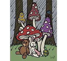 Teddy Bear And Bunny - Rainy Day Blues Photographic Print