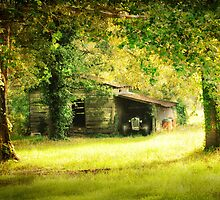 Little Tractor Barn by Patito49