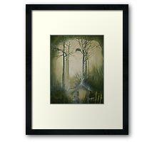 Empty Nest... Framed Print