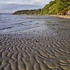 Tidal Pattern in the Sand by Jeff Goulden