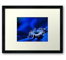 Blue Moon.  Framed Print
