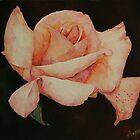 Floating Rose  by NatureLover81