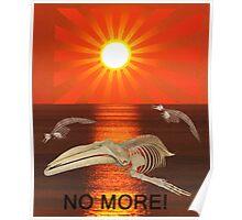 No More Poster