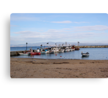 a bunch of boats Canvas Print