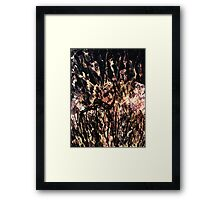 Watchman of the Night Framed Print