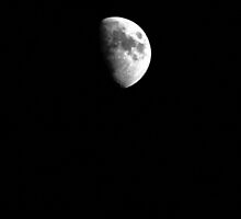 Half Moon - January 20th, 2013 - Middle Island, New York  by © Sophie W. Smith