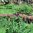 Rusted farm machinery by Cameron Hicks
