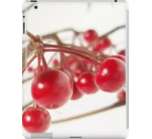 Scarlet Berry iPad Case/Skin
