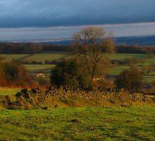 January Glow, Alton, Derbyshire by wiggyofipswich
