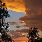 Summer Sunset by bidya
